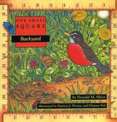 Backyard (One Small Square Series)