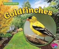 Goldfinches (Backyard Bird Series)