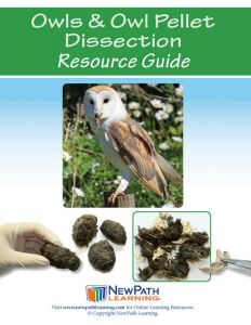 Owls & Owl Pellet Dissection Resource Guide
