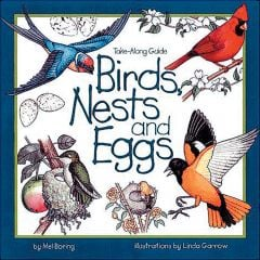 Take-Along Guide To Birds, Nests, And Eggs