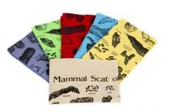 Scat Scarves Collection (Discounted Set of 6 Colors)