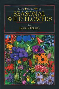 Seasonal Wildflowers of Eastern Forests (DVD)