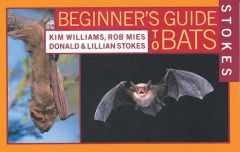 Bats (Stokes Beginner's Guide®)