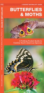 Butterflies & Moths of North America (Pocket Naturalist® Guide)