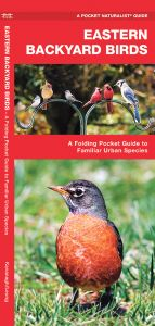 Eastern Backyard Birds (Pocket Naturalist® Guide)