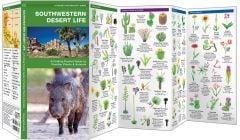 Southwestern Desert Life (Pocket Naturalist® Guide)
