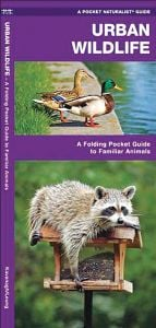 Urban Wildlife (Pocket Naturalist® Guide)
