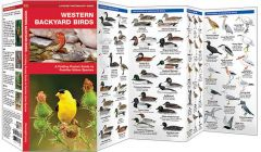 Western Backyard Birds (Pocket Naturalist® Guide)