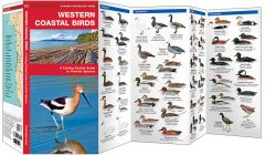 Western Coastal Birds (Pocket Naturalist® Guide)