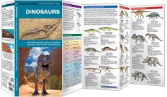 Dinosaurs (Pocket Naturalist® Guide)