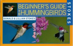 Hummingbirds (Stokes Beginner's Guide®)