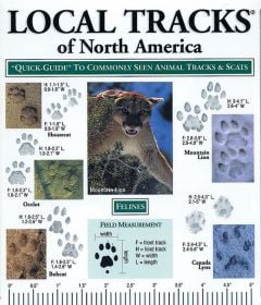 Local Tracks of North America (Laminated Fold-Out Guide)
