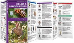 House & Garden Pests (Pocket Naturalist® Guide)