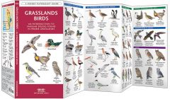 Grassland Birds (Pocket Naturalist® Guide)