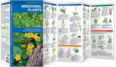 Medicinal Plants (Pocket Naturalist® Guide)