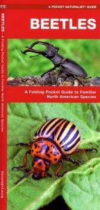 Beetles of North America (Pocket Naturalist® Guide)