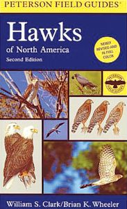 Hawks of North America (Peterson Field Guide®)