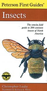Insects (Peterson First Guide®)