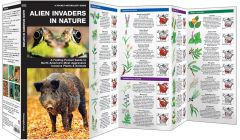 Invasive Species: Alien Invaders in Nature (Pocket Naturalist® Guide)