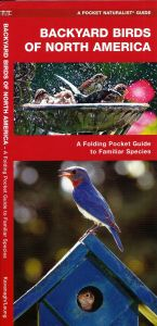Backyard Birds of North America (Pocket Naturalist® Guide)