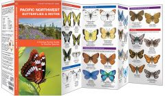 Pacific Northwest Butterflies & Moths (Pocket Naturalist® Guide)