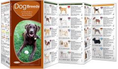 Dog Breeds (Pocket Naturalist® Guide)