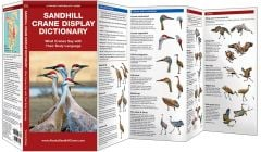 Sandhill Crane Display Dictionary (Pocket Naturalist® Guide)