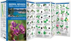 Sierra Nevada Trees & Wildflowers (Pocket Naturalist® Guide)