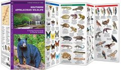 Southern Appalachian Wildlife (Pocket Naturalist® Guide)