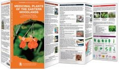 Medicinal Plants of the Eastern Woodlands (Pathfinder Outdoor Survival Guide™)