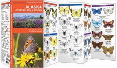 Alaska Butterflies & Moths (Pocket Naturalist® Guide).
