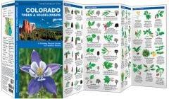 Colorado Trees & Wildflowers (Pocket Naturalist® Guide)