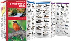 Connecticut Birds (Pocket Naturalist® Guide)