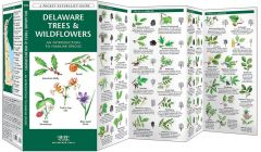 Delaware Trees & Wildflowers (Pocket Naturalist® Guide)