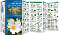 Georgia Trees & Wildflowers (Pocket Naturalist® Guide)