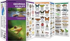 Georgia Wildlife (Pocket Naturalist® Guide)