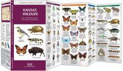 Kansas Wildlife (Pocket Naturalist® Guide)