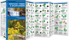 Kentucky Trees & Wildflowers (Pocket Naturalist® Guide)