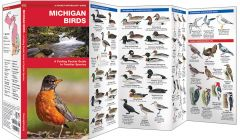 Michigan Birds (Pocket Naturalist® Guide)
