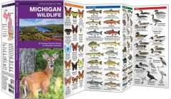 Michigan Wildlife (Pocket Naturalist® Guide)