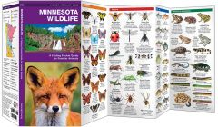 Minnesota Wildlife (Pocket Naturalist® Guide)