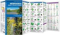 Nebraska Trees & Wildflowers (Pocket Naturalist® Guide)