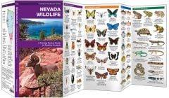 Nevada Wildlife (Pocket Naturalist® Guide)