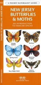 New Jersey Butterflies & Moths (Pocket Naturalist® Guide)