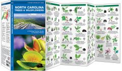 North Carolina Trees & Wildflowers (Pocket Naturalist® Guide)