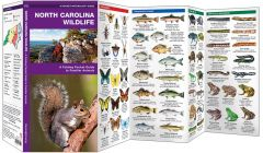 North Carolina Wildlife (Pocket Naturalist® Guide)