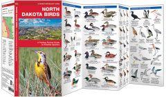 North Dakota Birds (Pocket Naturalist® Guide)