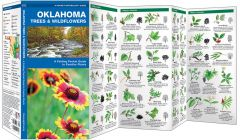 Oklahoma Trees & Wildflowers (Pocket Naturalist® Guide)