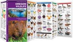 Oregon Wildlife (Pocket Naturalist® Guide)