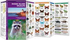 Rhode Island Wildlife (Pocket Naturalist® Guide)